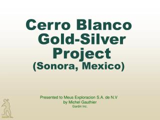 Cerro Blanco Gold-Silver Project (Sonora, Mexico)