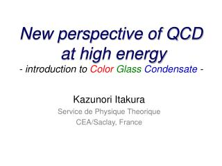 New perspective of QCD  at high energy - introduction to  Color Glass Condensate  -