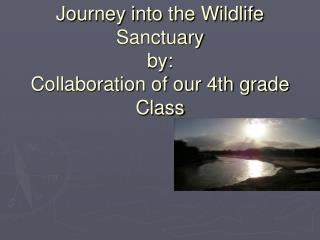 Journey into the Wildlife Sanctuary by: Collaboration of our 4th grade Class