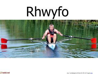 Rhwyfo