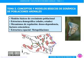 TEMA 5. CONCEPTOS Y MODELOS B SICOS DE DIN MICA DE POBLACIONES ANIMALES