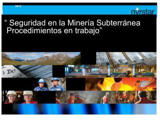 """"""" Seguridad en la Minería Subterránea   Procedimientos en trabajo"""""""
