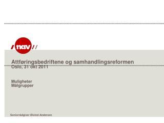 Attføringsbedriftene og samhandlingsreformen Oslo, 31 okt 2011 Muligheter Målgrupper