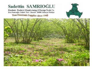 COMPANY        PROFILE  Company Name Sadettin Samrıoğlu    ( Sole Owner-  Aytaç Samrıoğlu )