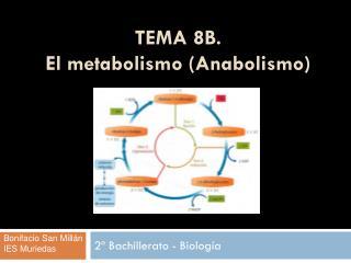 TEMA 8B.  El metabolismo (Anabolismo)