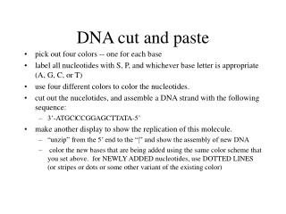DNA cut and paste