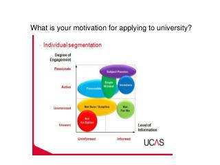 What is your motivation for applying to university?