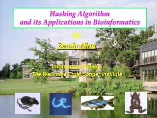 Hashing Algorithm  and its Applications in Bioinformatics