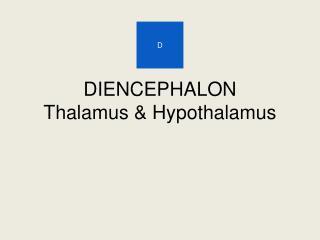 DIENCEPHALON Thalamus & Hypothalamus