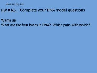 HW # 61-   Complete your DNA model questions Warm up