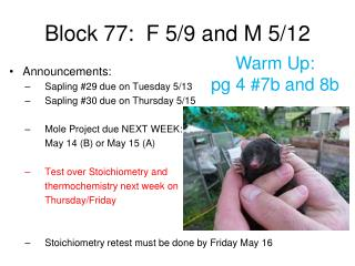 Block 77:  F 5/9 and M 5/12