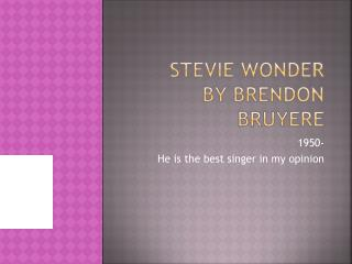 Stevie  wonder      by  brendon bruyere