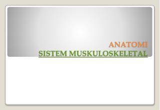 ANATOMI  SISTEM MUSKULOSKELETAL