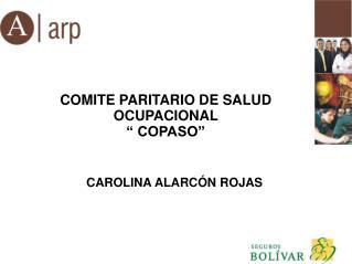 """COMITE PARITARIO DE SALUD OCUPACIONAL  """" COPASO"""""""