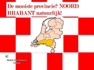 De mooiste provincie NOORD BRABANT natuurlijk