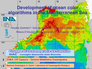 Development of ocean color algorithms in the Mediterranean Sea