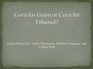 Corn for Grain or Corn for Ethanol?