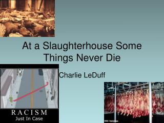 At a Slaughterhouse Some Things Never Die