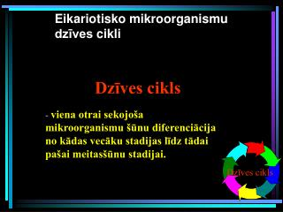 Eikariotisko mikroorganismu dzīves  cikli