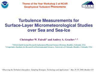 Theme of the Year Workshop 3 at NCAR Geophysical Turbulent  Phenomena