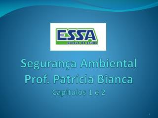 Segurança Ambiental Prof. Patrícia Bianca Capítulos 1 e 2