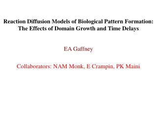 EA Gaffney Collaborators: NAM Monk, E Crampin, PK Maini