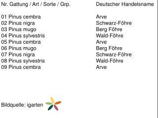 Nr. Gattung / Art / Sorte /  Grp .  Deutscher  Handelsname 01  Pinus cembra Arve