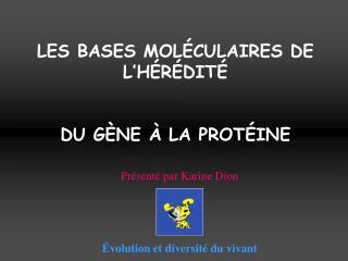 LES BASES MOLÉCULAIRES DE L'HÉRÉDITÉ DU GÈNE À LA PROTÉINE