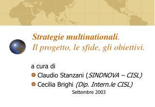 Strategie multinationali .  Il progetto, le sfide, gli obiettivi.
