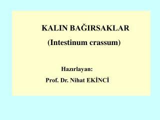 KALIN BAĞIRSAKLAR    (Intestinum crassum) Hazırlayan: Prof. Dr. Nihat EKİNCİ