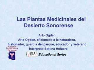 Las Plantas Medicinales del Desierto Sonorense