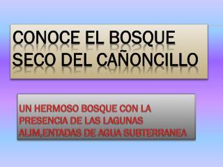 CONOCE EL BOSQUE SECO DEL CAÑONCILLO