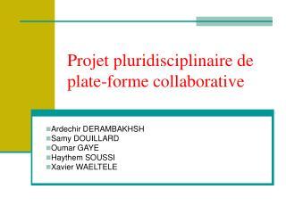 Projet pluridisciplinaire de plate-forme collaborative
