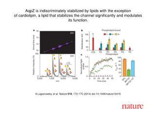 A Laganowsky et al. Nature  510 , 172-175 (2014)  doi:10.1038/nature13419