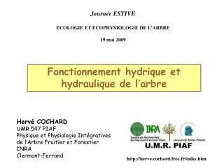 Journée ESTIVE ECOLOGIE ET ECOPHYSIOLOGIE DE L'ARBRE 19 mai 2009