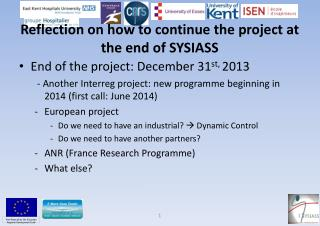 Reflection on how to continue the project at the end of SYSIASS