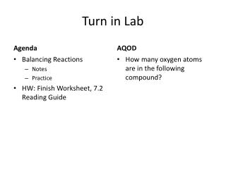 Turn in Lab