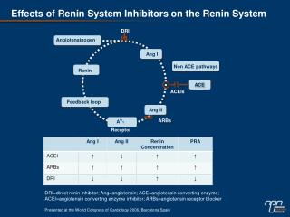 Effects of Renin System Inhibitors on the Renin System