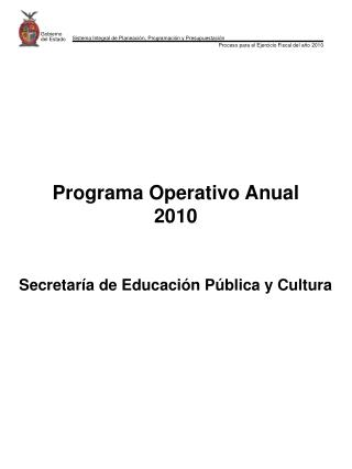 Programa Operativo Anual 2010