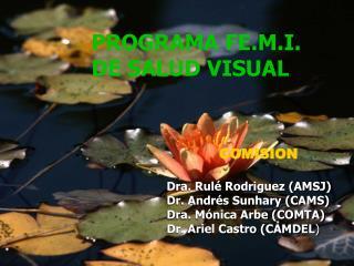 PROGRAMA FE.M.I.  DE SALUD VISUAL