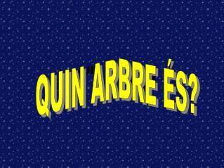 QUIN ARBE �S?