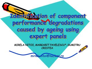 Identification of component performance degradations caused by ageing using expert panels