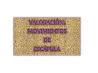 VALORACIÓN: MOVIMIENTOS  DE ESCÁPULA