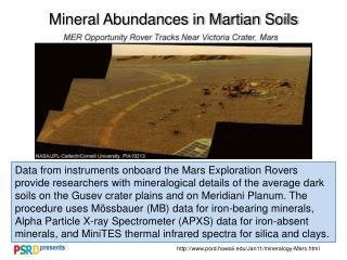 Mineral Abundances in Martian Soils
