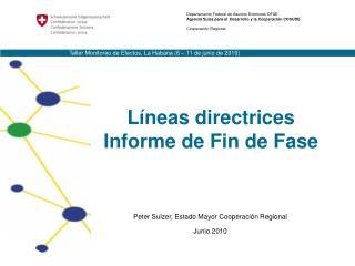 Líneas directrices Informe de Fin de Fase