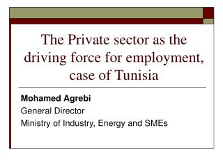 Mohamed Agrebi General Director Ministry of Industry, Energy and SMEs