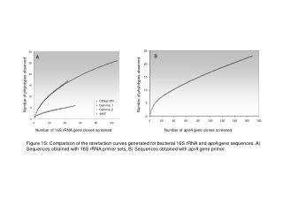 Number of  apsA  gene clones screened