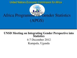 Africa Programme on Gender Statistics (APGS)