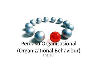 Perilaku Organisasional (Organizational  Behaviour )