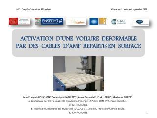 ACTIVATION  D'UNE  VOILURE  DEFORMABLE  PAR  DES  CABLES  D'AMF  REPARTIS EN  SURFACE